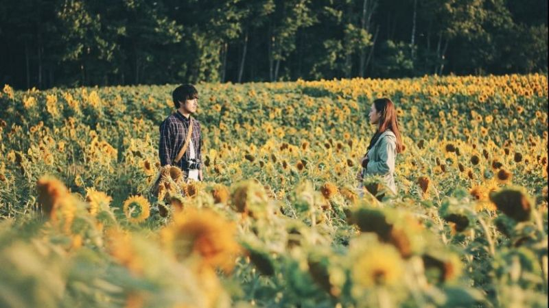 Viet Film Fest returns for its 10th edition